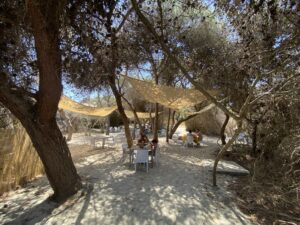 Spiagge in Salento con bambini: Lido Pineta