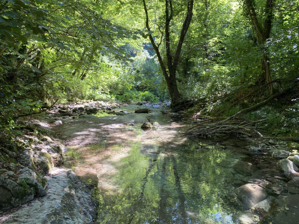scorcio di un ruscello nella Valle dell'Orfento