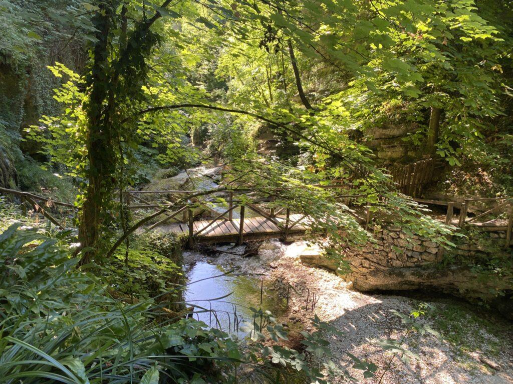scorcio di un ponte di legno su un ruscello nella Valle dell'Orfento